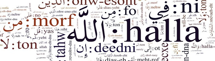 Professional Arabic translation services company online